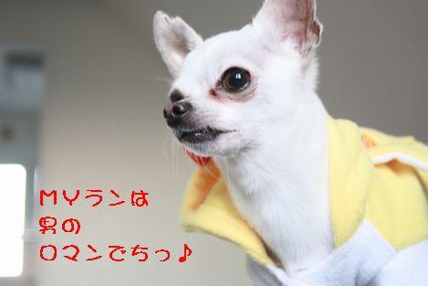 IMG_87830.jpg