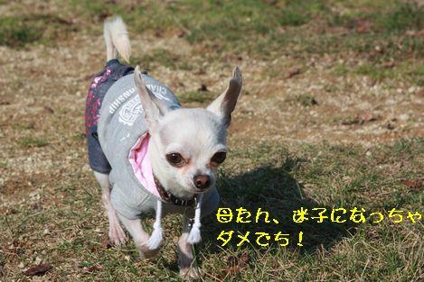 IMG_9105.jpg