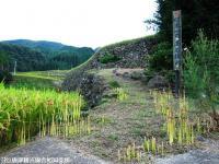 10.日本一の石積み周辺(2009年9月15日)