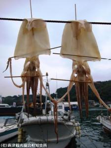 10.呼子(2009年9月21日)