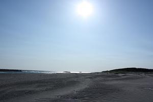 20110512.jpg