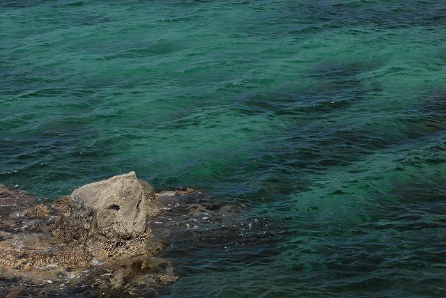 ハワイ海岸5