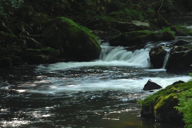 大佐の渓流2