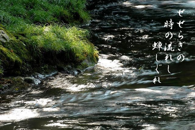 大佐の渓流3