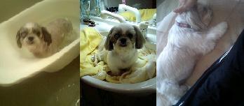 お風呂3連