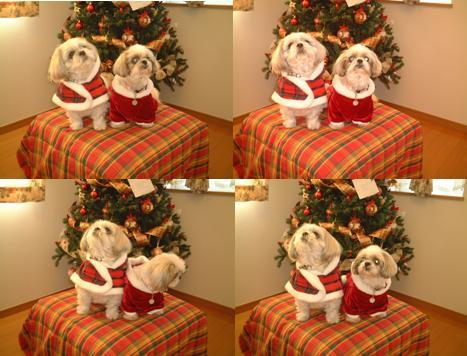 クリスマス20074連