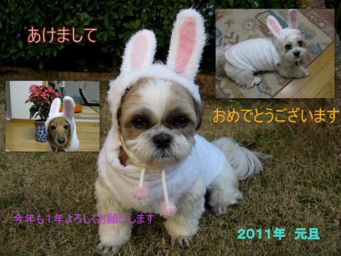 2010_12_25_convert_20110108103457.jpg