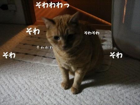 おかえり? (1)
