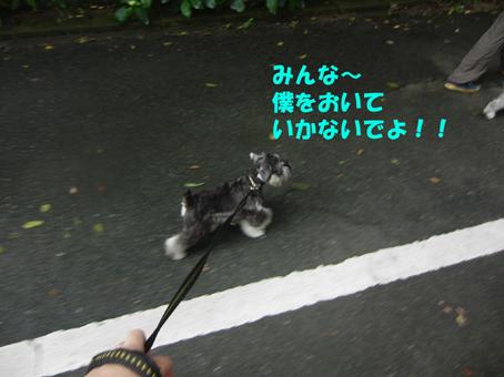 武蔵山登り初体験
