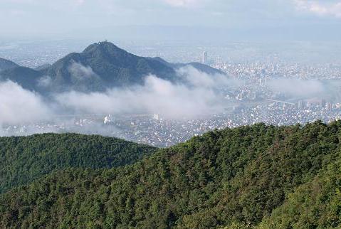 金華山 014