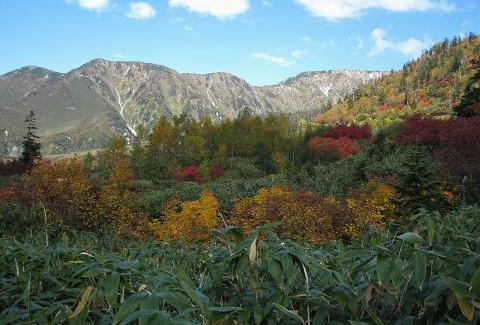 中,奥大日岳 183