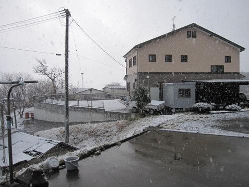 IMG_9757雪 (500x375)