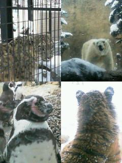 旭川動物園2
