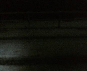 暗くって見難いですが外は雪でした・・・