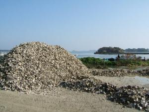 松島、かき小屋⑫
