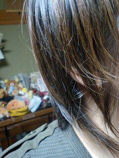 髪きり魔現る!