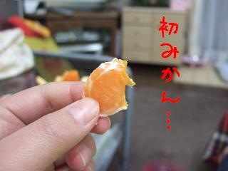 DSCF1163.jpg
