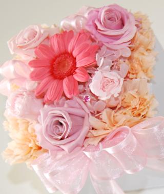 pinkgarbera.jpg