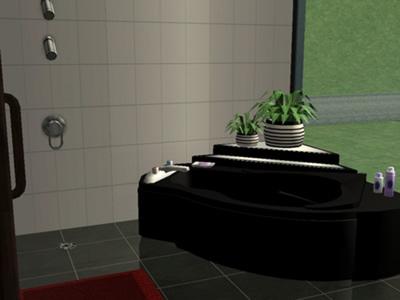 bath_sims2.jpg