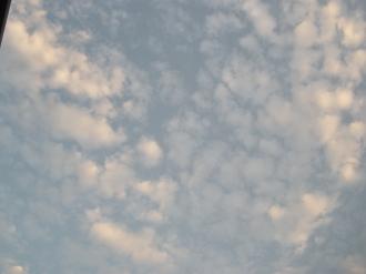 PA200484.jpg