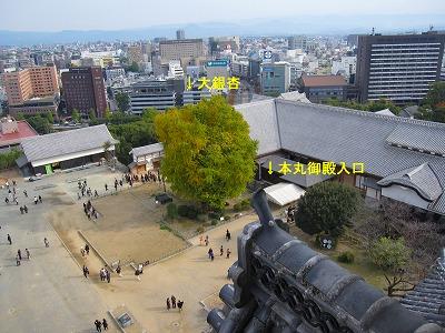 IMG_7167m-kumamotojyou