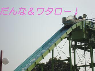 DSC07654のコピー