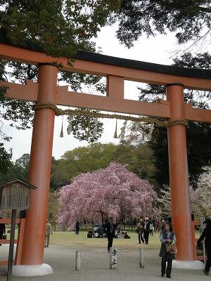 japan-narakyoto