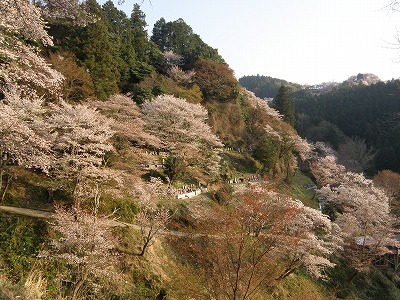 japan-narakyoto