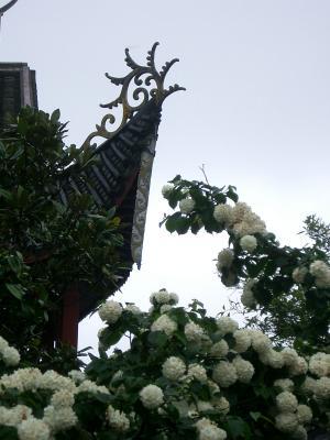 2007・9・7雪峰寺