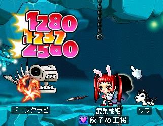 Mapleprof_20080229021146.jpg