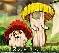 Mapleprof_20080302064238.jpg