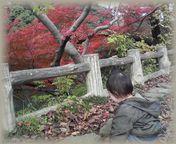 kojyoukouen2.jpg