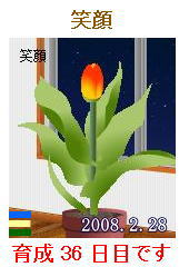 0228.jpg