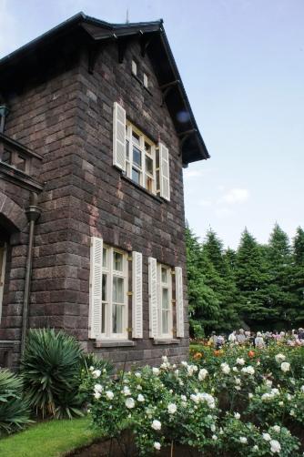 旧古河邸の薔薇②