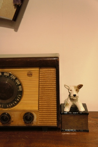 ラジオとわんこ