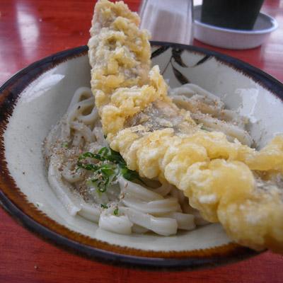 ikegami001.jpg