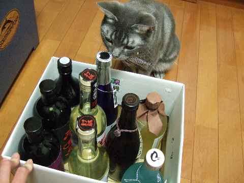 ワインは?