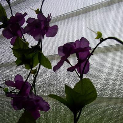 網戸に造花で窓の装飾20111129