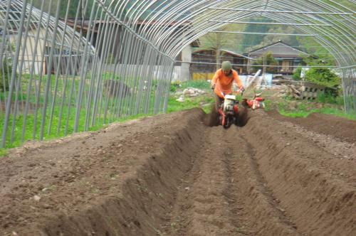 トマト畝たて(2)2012.5.14