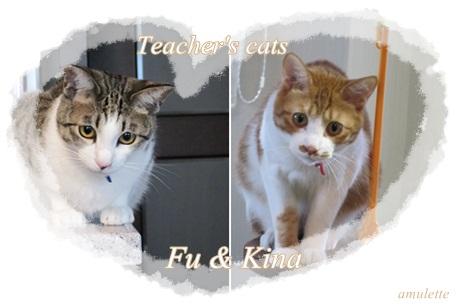 fu&kina7-24