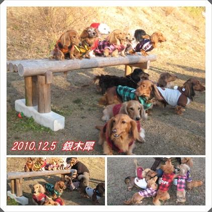 20101207-4.jpg