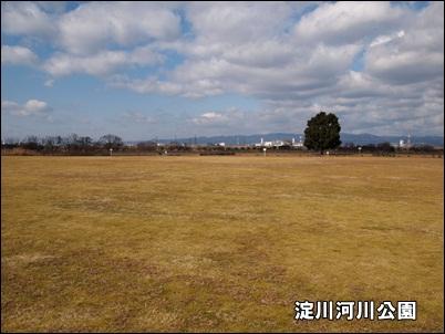 20110131-3.jpg