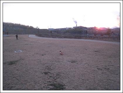 20110207-5.jpg