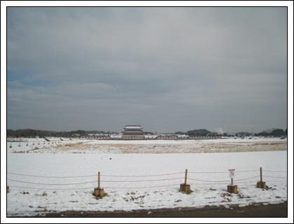 20110212-2.jpg