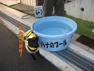 20070904_水泳練習1