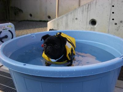 20070904_水泳練習2