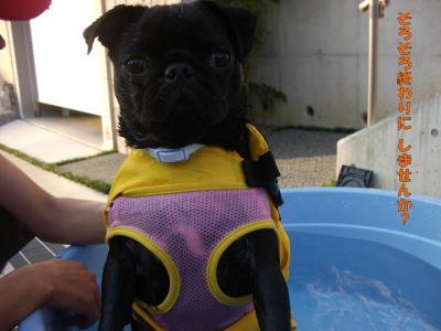 20070904_水泳練習4