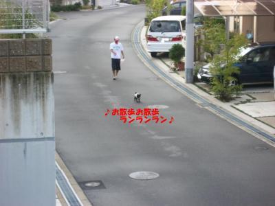20070925_朝散歩1
