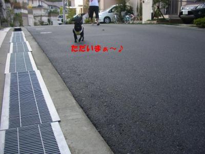 20070925_朝散歩2