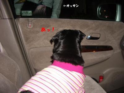 20070929_お迎え5